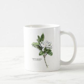 Gardenia Jasminoides (Common Gardenia) Coffee Mug