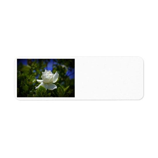Gardenia Return Address Label