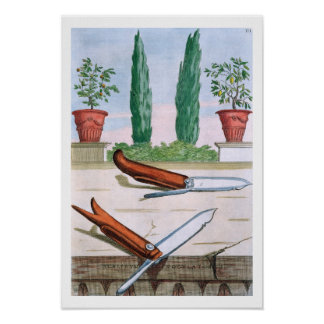 Gardening Knife, from 'Hesperides' by Giovanni Bat Poster