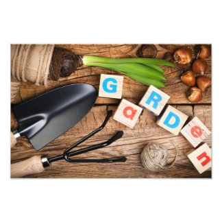 Gardening Tools with Flower and Bulbs on Wood Photo Print