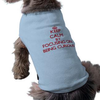 Gardez le calme en se concentrant sur être curieux t-shirt pour animal domestique