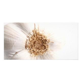 Garlic bulb photo card