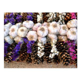 Garlic bulbs and pine cones postcard