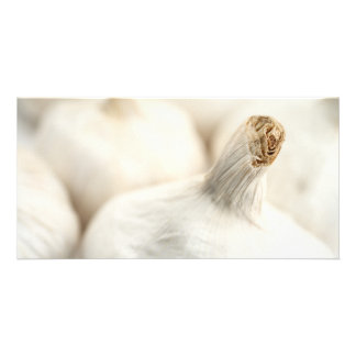 Garlic bulbs photo greeting card