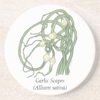 Garlic Scapes Coaster