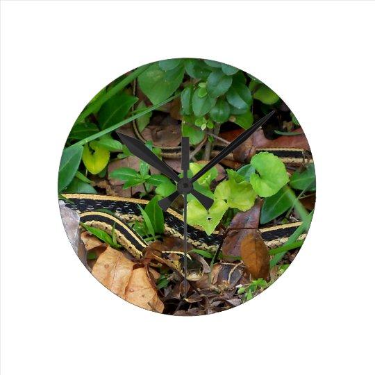 Garter Snake Wildlife Wall Clock