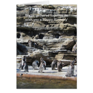 Gathering of Penguins Card