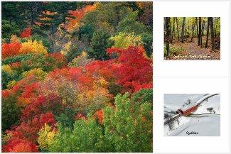 Gatineau Park Postcards