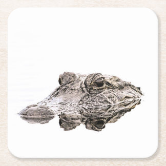 Gator Coasters