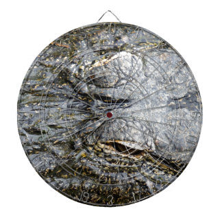 Gator Dartboards