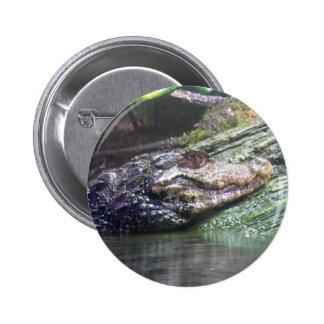 Gator Grins - Button 2