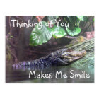 'Gator Grins: Thinking of You - Postcard