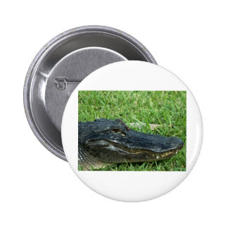 Gator in grass 2 inch round button