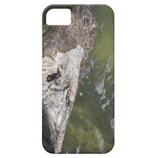 gator iPhone 5 case