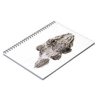 Gator Notebook