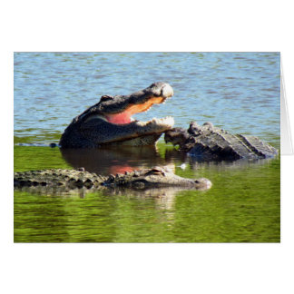 Gator Party (blank inside) Card