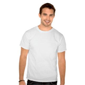 Gay Pride - Born This Way Shirt