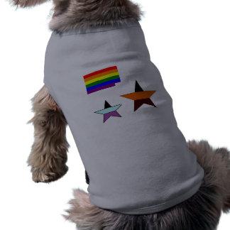gay-pride-flag-738850, vvv, star shirt