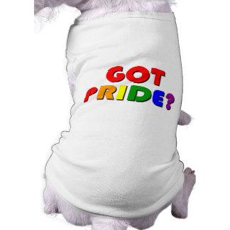 Gay Pride Gift Shirt