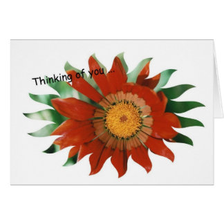 Gazania Sunburst Card