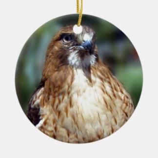 Gaze Of The Falcom Round Ceramic Ornament