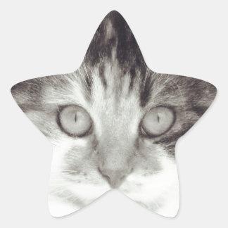 Gaze Star Sticker