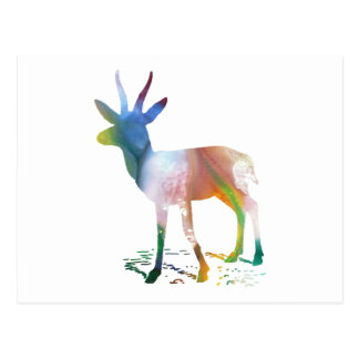 Gazelle art postcard