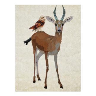Gazelle & Owl Art Poster