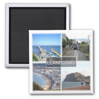 GB * Llandudno Wales Magnet