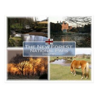 GB United Kingdom - England - New Forest N.P. - Postcard