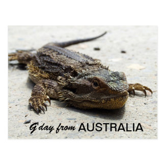 G'day From Australia Postcard