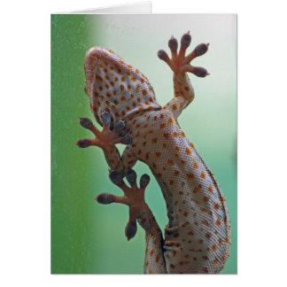 Gecko card