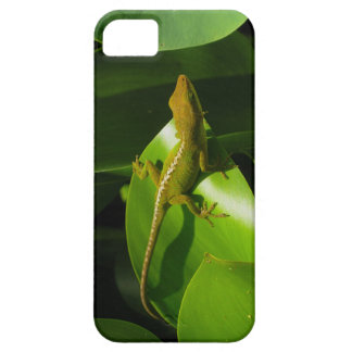 Gecko iPhone 5 Covers