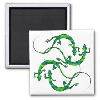 Geckos Magnet