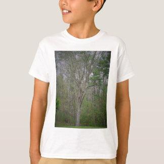 GEDC0491 (2).JPG T-Shirt