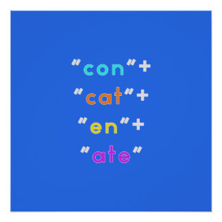 "Geeky (but stylish!) ""Concatenate"" poster"