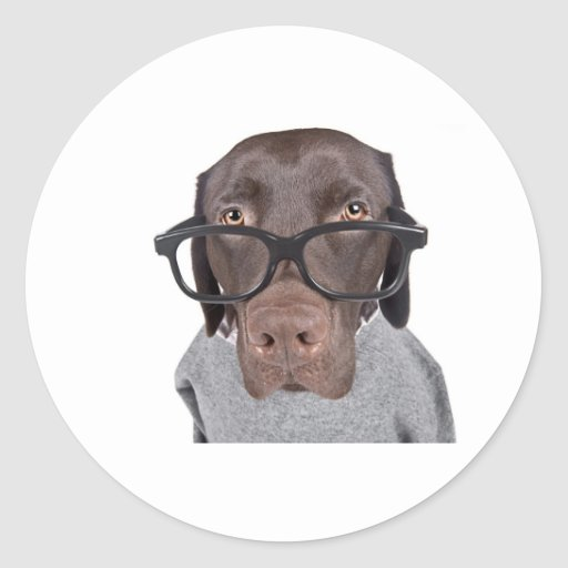 Geeky Dawg Round Stickers