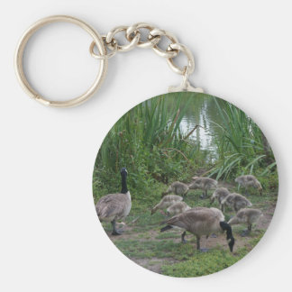 Geese and Goslings Keychain