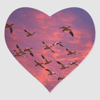 Geese At Sunset Heart Sticker