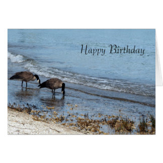 Geese Birthday Card