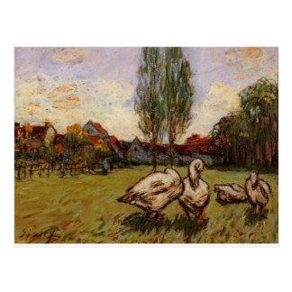 Geese by Alfred Sisley Postcard
