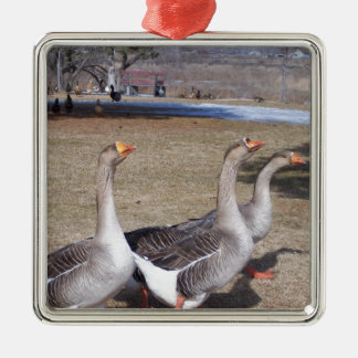 Geese by the Pond Silver-Colored Square Ornament