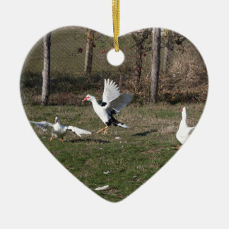 Geese fighting ceramic heart ornament