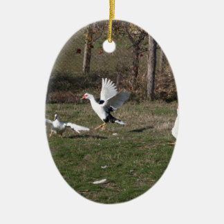 Geese fighting ceramic oval ornament