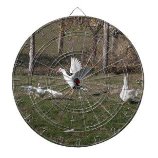 Geese fighting dartboard