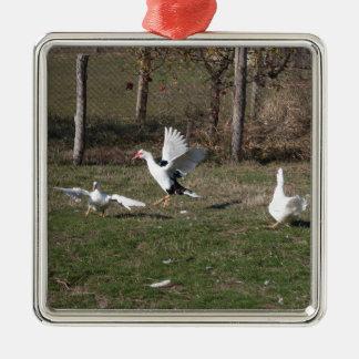 Geese fighting metal ornament