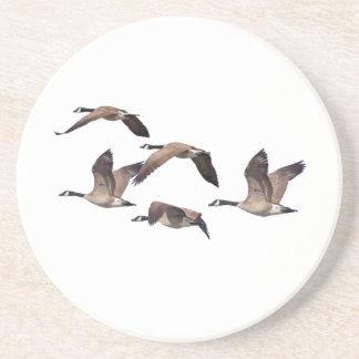Geese in flight coaster