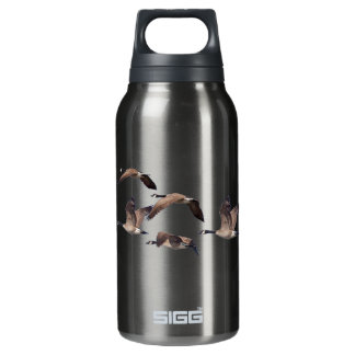 Geese in flight insulated water bottle