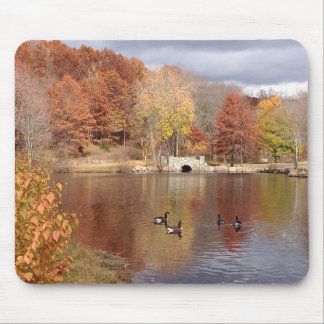 Geese in Reflected Fall Colors - Mouse Pad