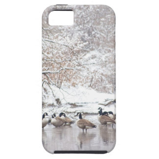 Geese in Snow Case For The iPhone 5